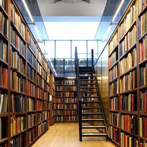 Библиотеки Цаган-Амана